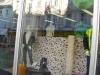 Umývanie okien domácností a firiem_ Bratislava