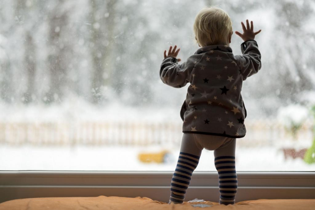 Zimné záhrady, skleníky, okná-umývanie, čistenie